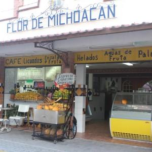 Messico_FlorDeMichoacan_unavegetarianaincucina_21