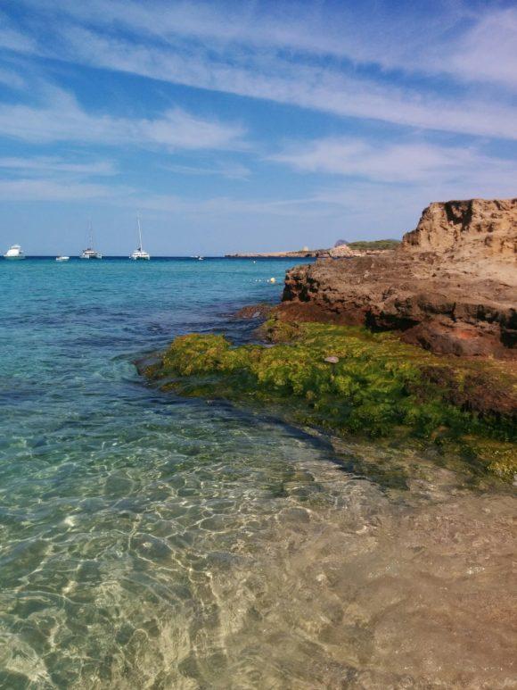 Cala-Comte-Ibiza_2