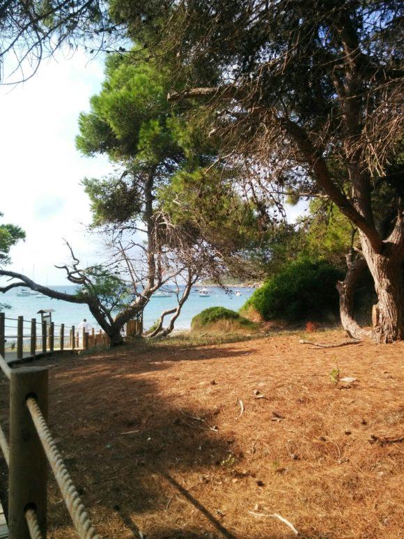 Ses-Salines-Ibiza